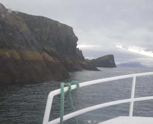 Puffin tours / Sightseeing